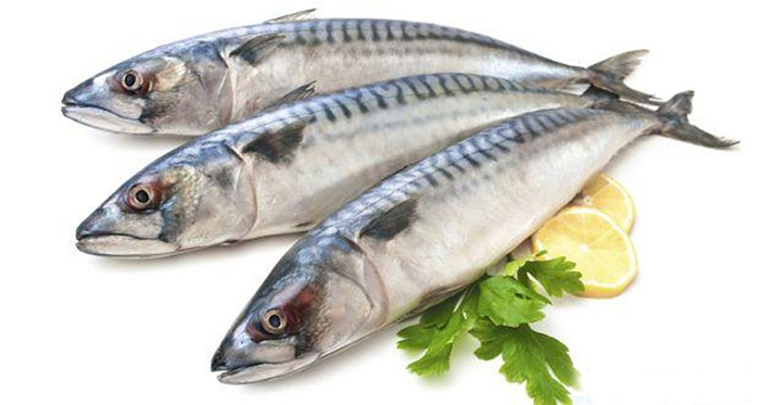 Lựa chọn cá thu tươi ngon để tạo nên miếng chả cá chất lượng